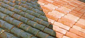Nettoyage et demoussage de toit